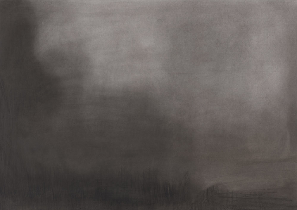 'Strettle Wetlands 1445 x 2160' 2012 charcoal on paper 144.5 x 216 cm.jpg