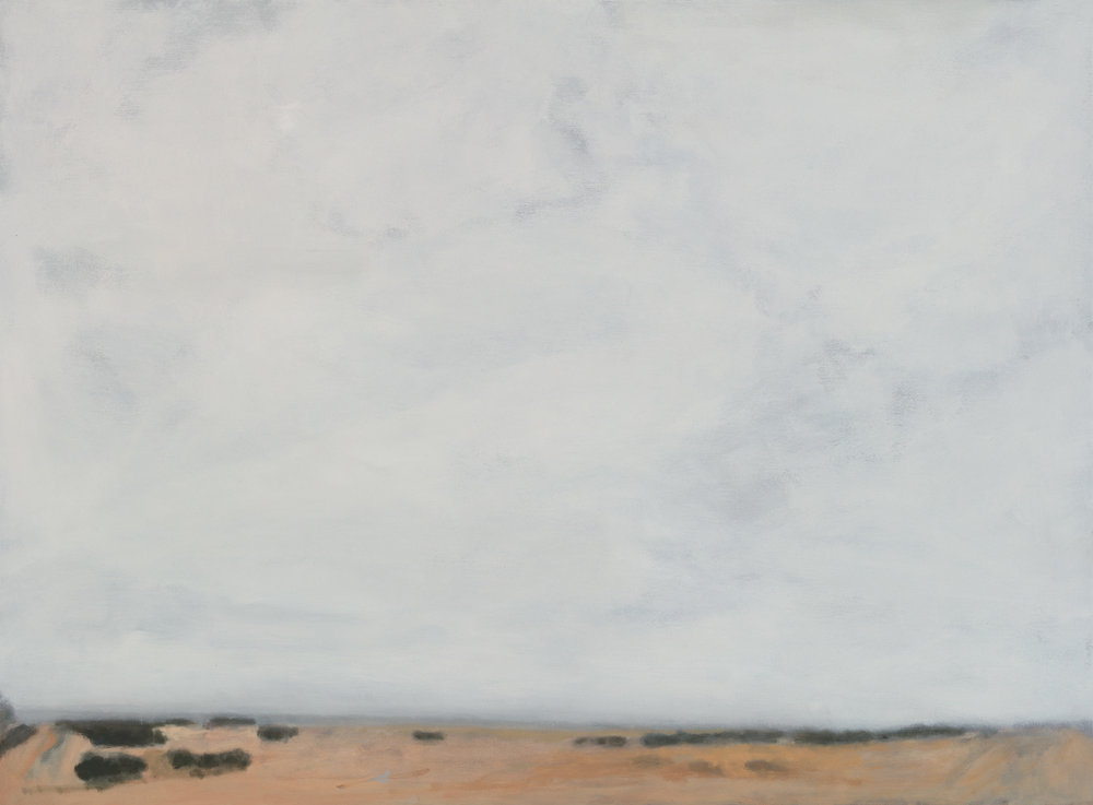 Hakea 2017 oil on linen 72 x 97.2 cm $5,500.jpg