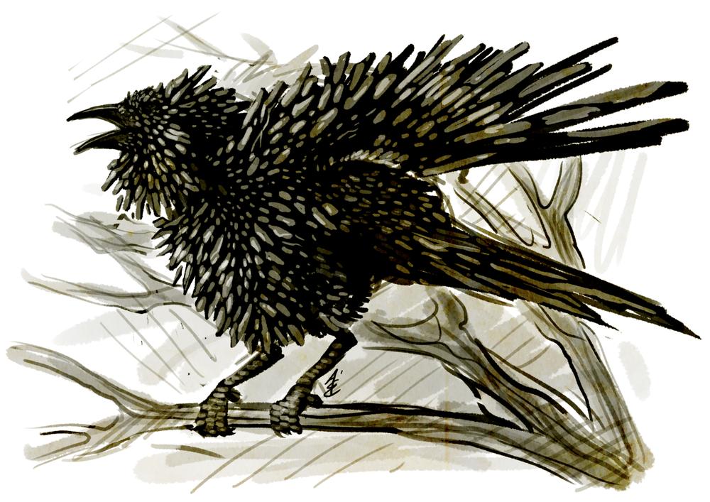 Shard Raven.png
