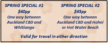 how to get to hahei from auckland