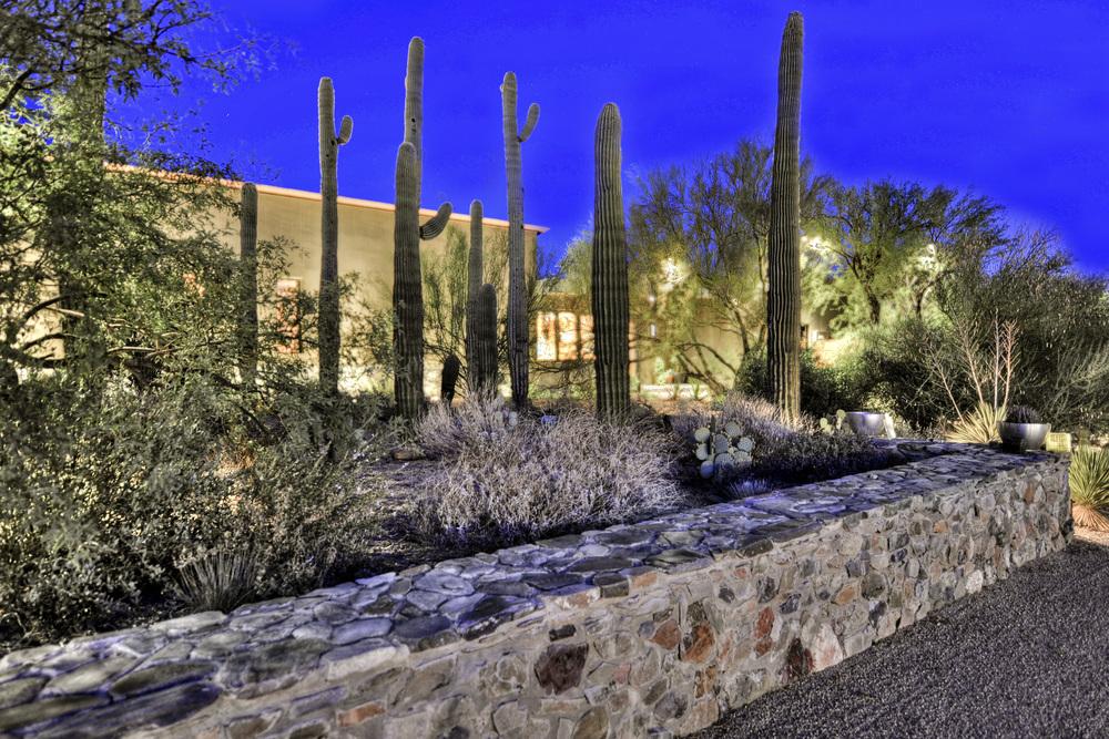 Front Entry-Cactus Garden.jpg