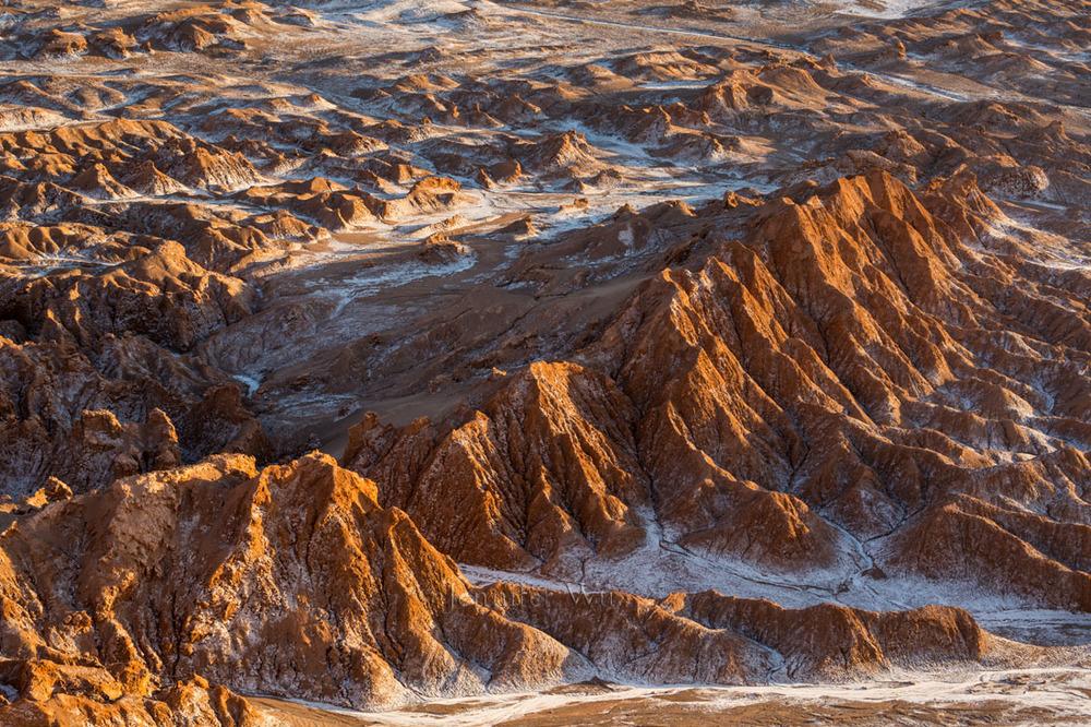 20140211_Atacama_177.jpg