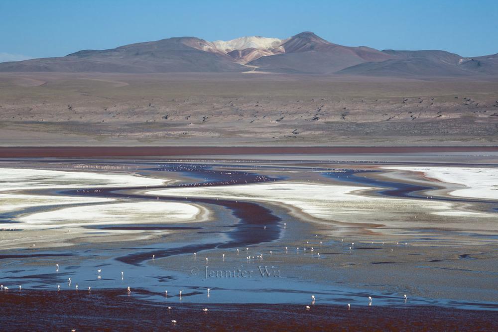 20140212_Atacama_656.jpg
