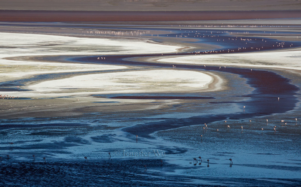 20140212_Atacama_664.jpg