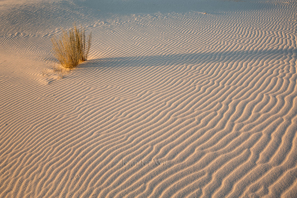 WHITE SANDS NATIONAL MONUMENT, NM AT sunrise.    F/16, 1/10 SECONDS, ISO 100, EF24-70MM F/2.8L II USM AT 35mm.    CANON EOS 5D MARK III