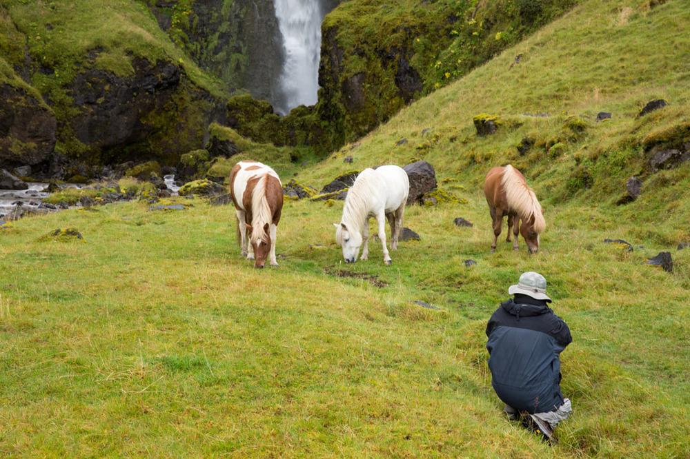 20140826_Iceland_646.jpg