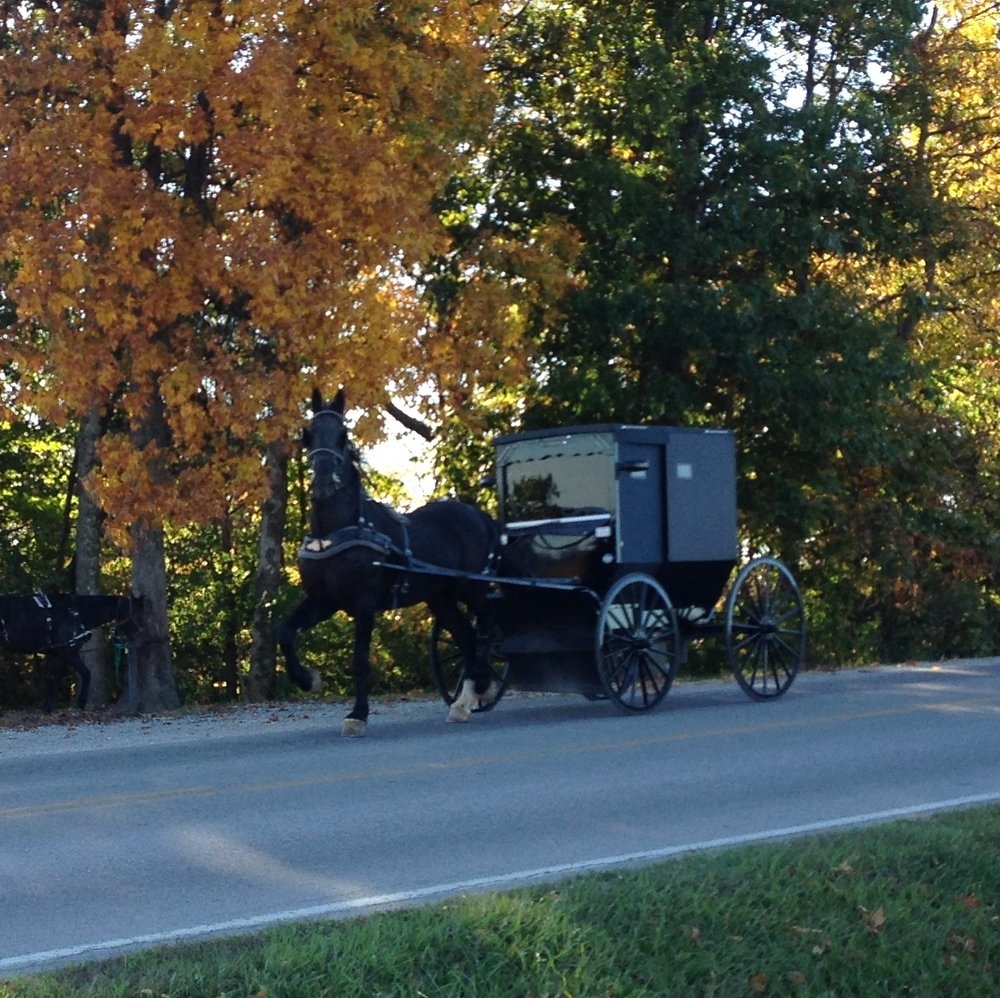 IMG_2183 Amish Buggy.jpg