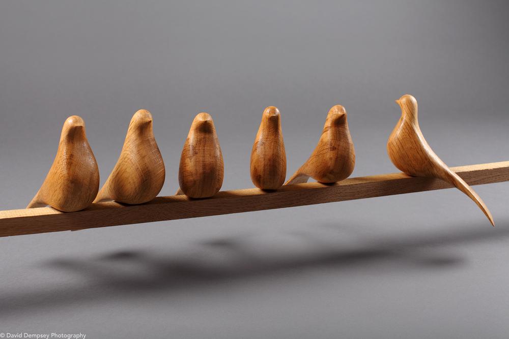 Birds by Tommy Carew