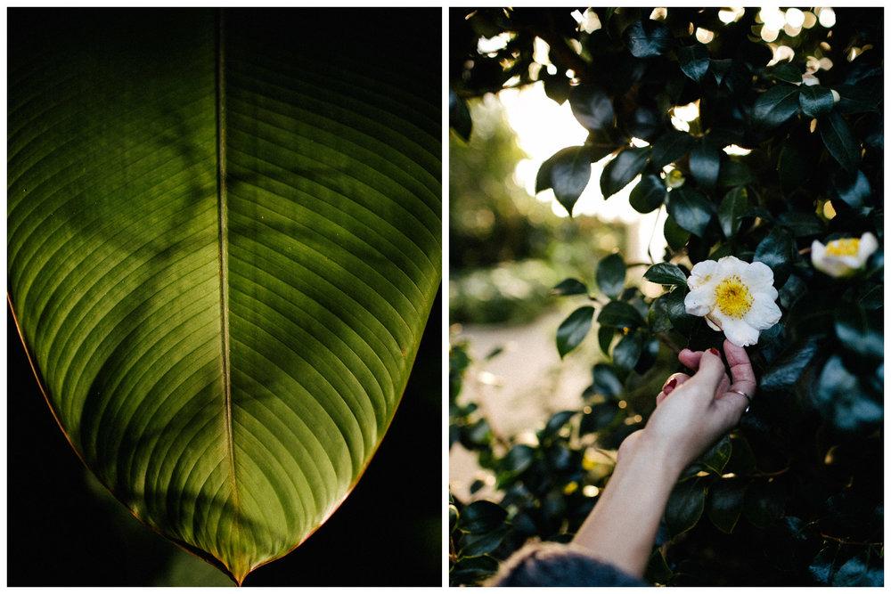 botanischer-garten-berlin-blog-ohhedwig_2