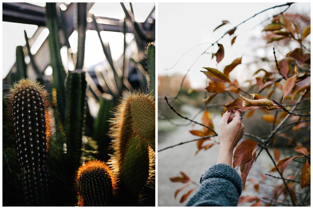 botanischer-garten-berlin-blog-ohhedwig_6