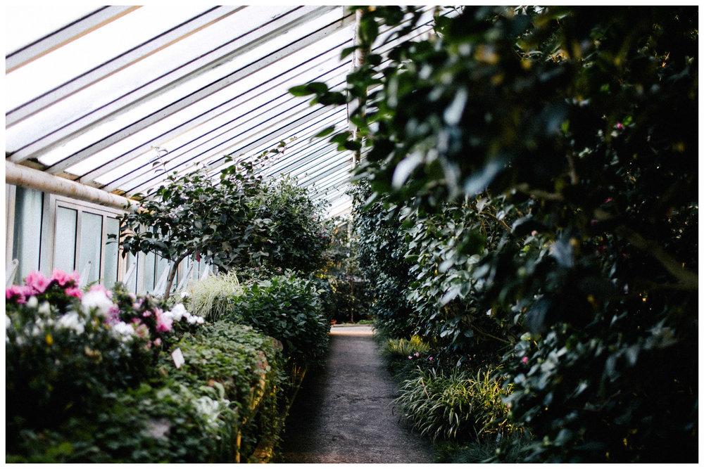 botanischer-garten-berlin-blog-ohhedwig_3