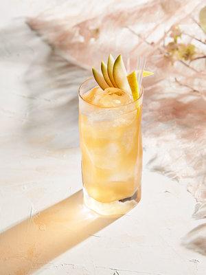Cocktails_Kombucha-Punch_bubbles.jpg
