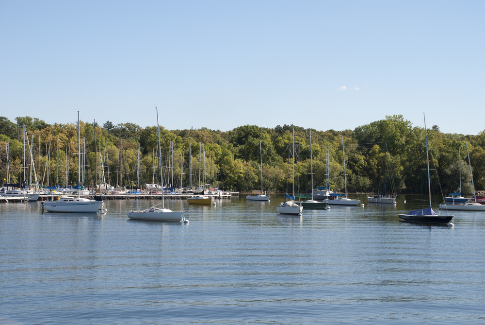 Fleet of sailboats on a lake