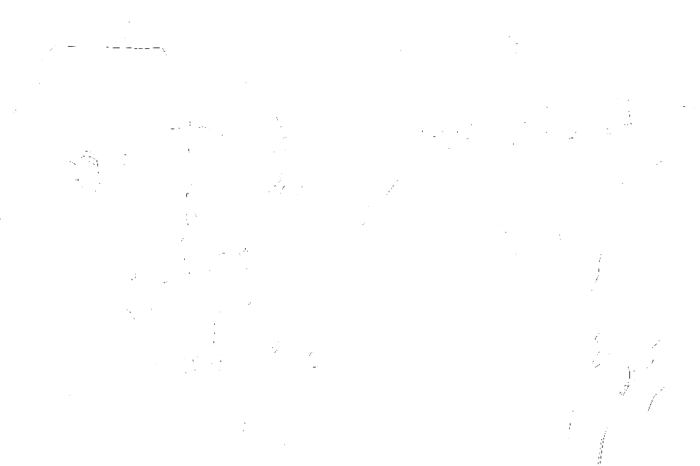20170121-DSCF4589 copy.png