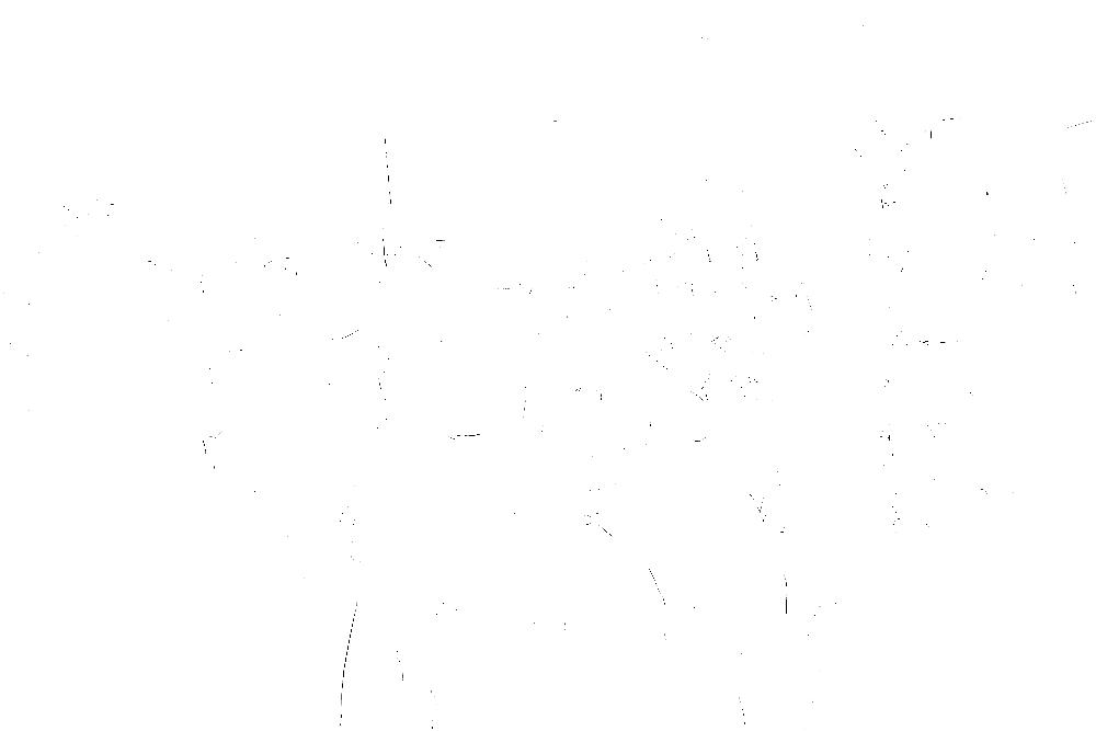20170121-DSCF4672 copy.png