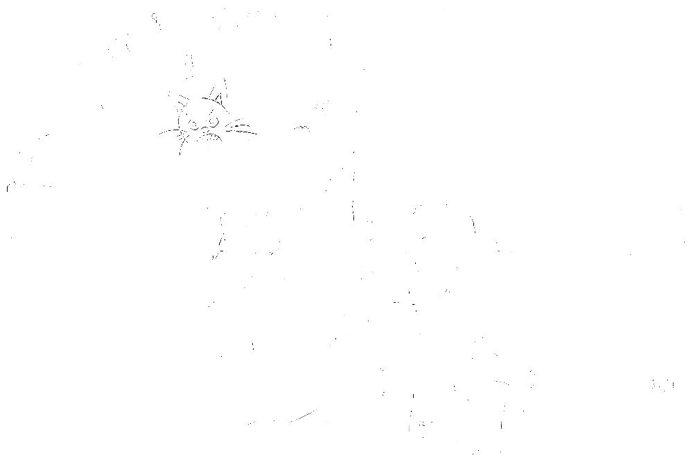 20170121-DSCF4676 copy.png