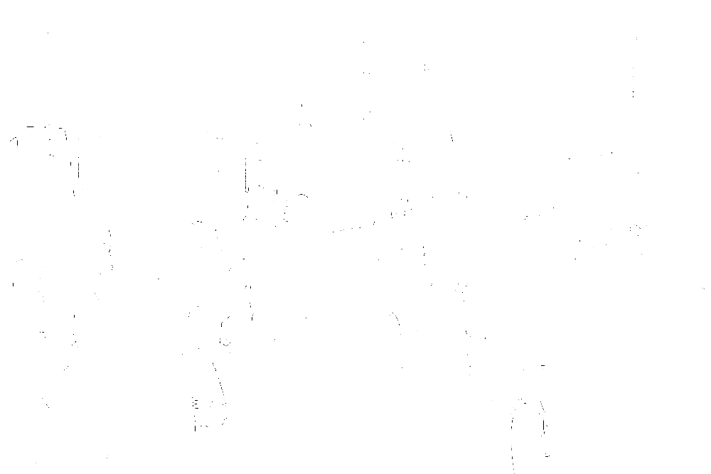 20170121-DSCF4694 copy.png