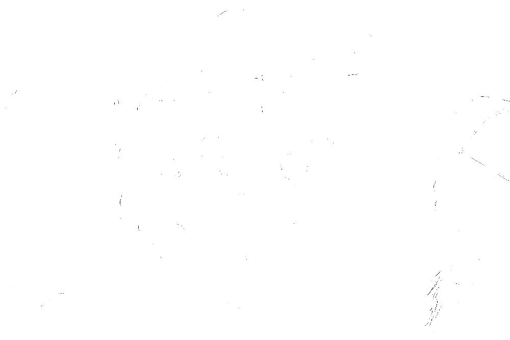 20170121-DSCF4575 copy.png