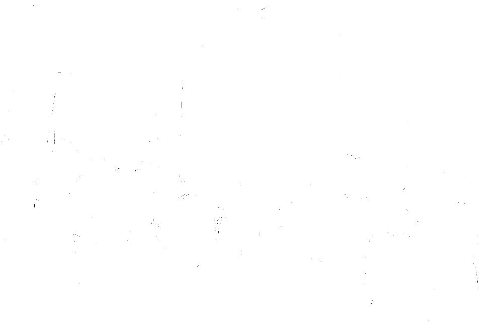 20170121-DSCF4654 copy.png