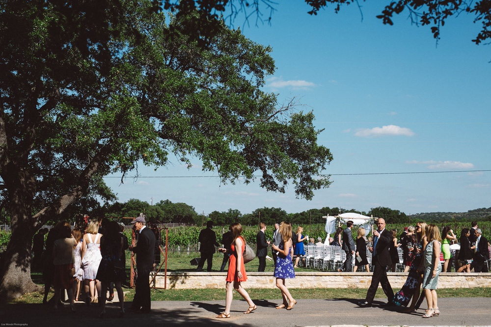 spicewood vineyards wedding-12.jpg