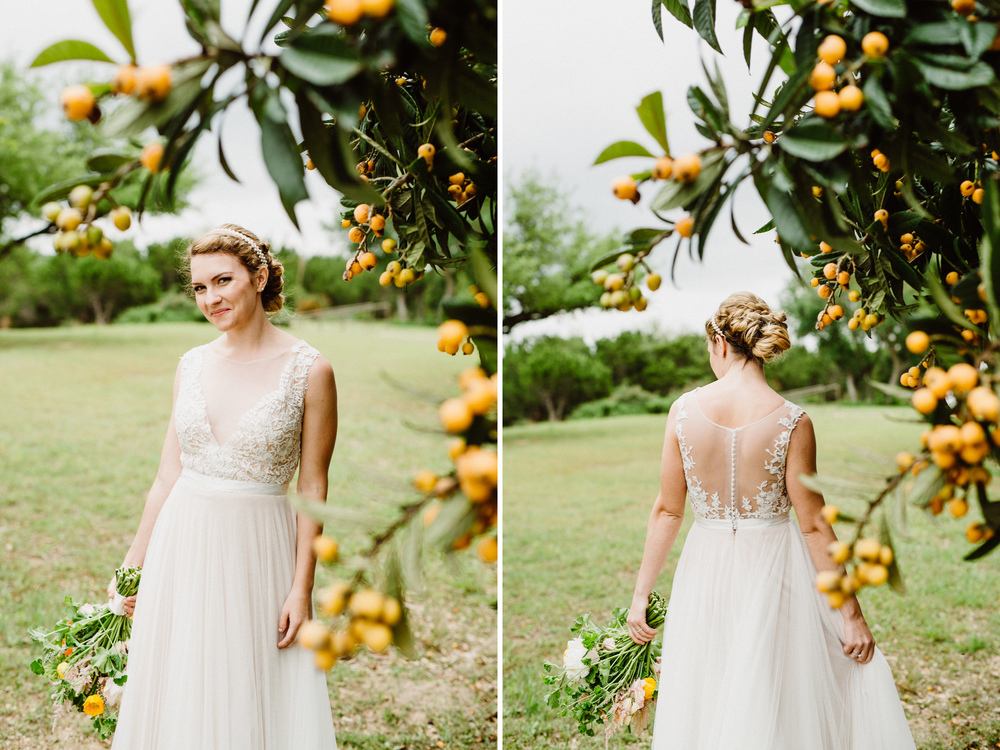 bride next to kumquat tree