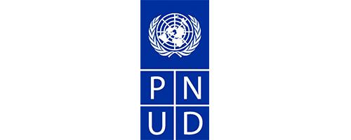 PNUD.png