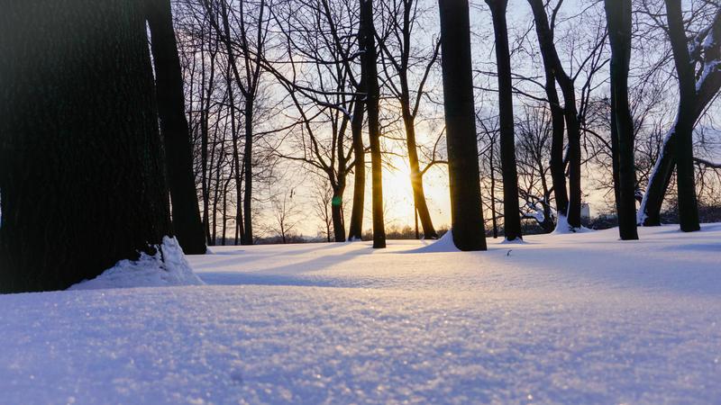 winter landscape.jpg