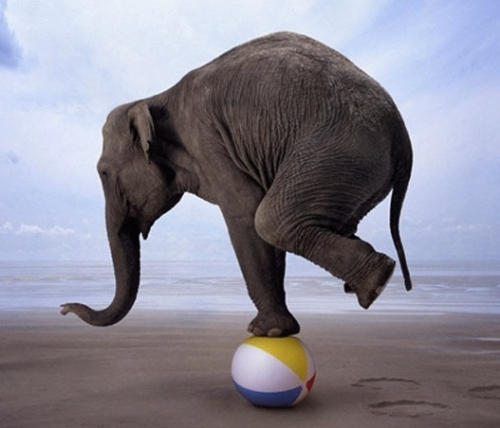 Balance: Elusive noun, Achievable Verb — GT Therapy Group