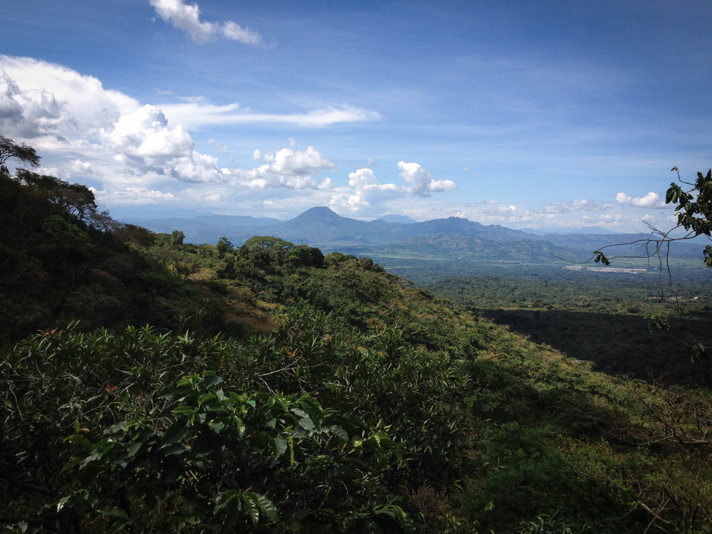 View of Volcan Chingo from the lookout point, near the top of Finca San Jorge.