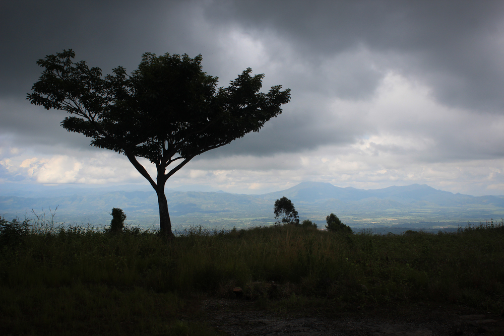 View of the Guatemalan border from Finca Argentina. Volcano Chingo in the center.