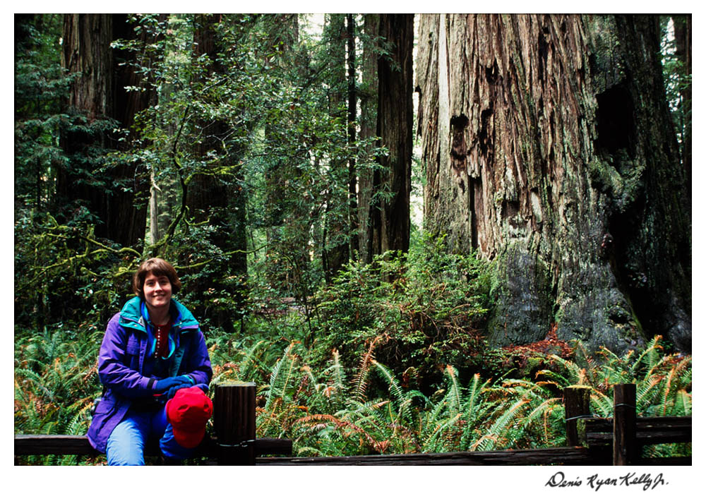 Redwoods with Mary Ann-2.jpg