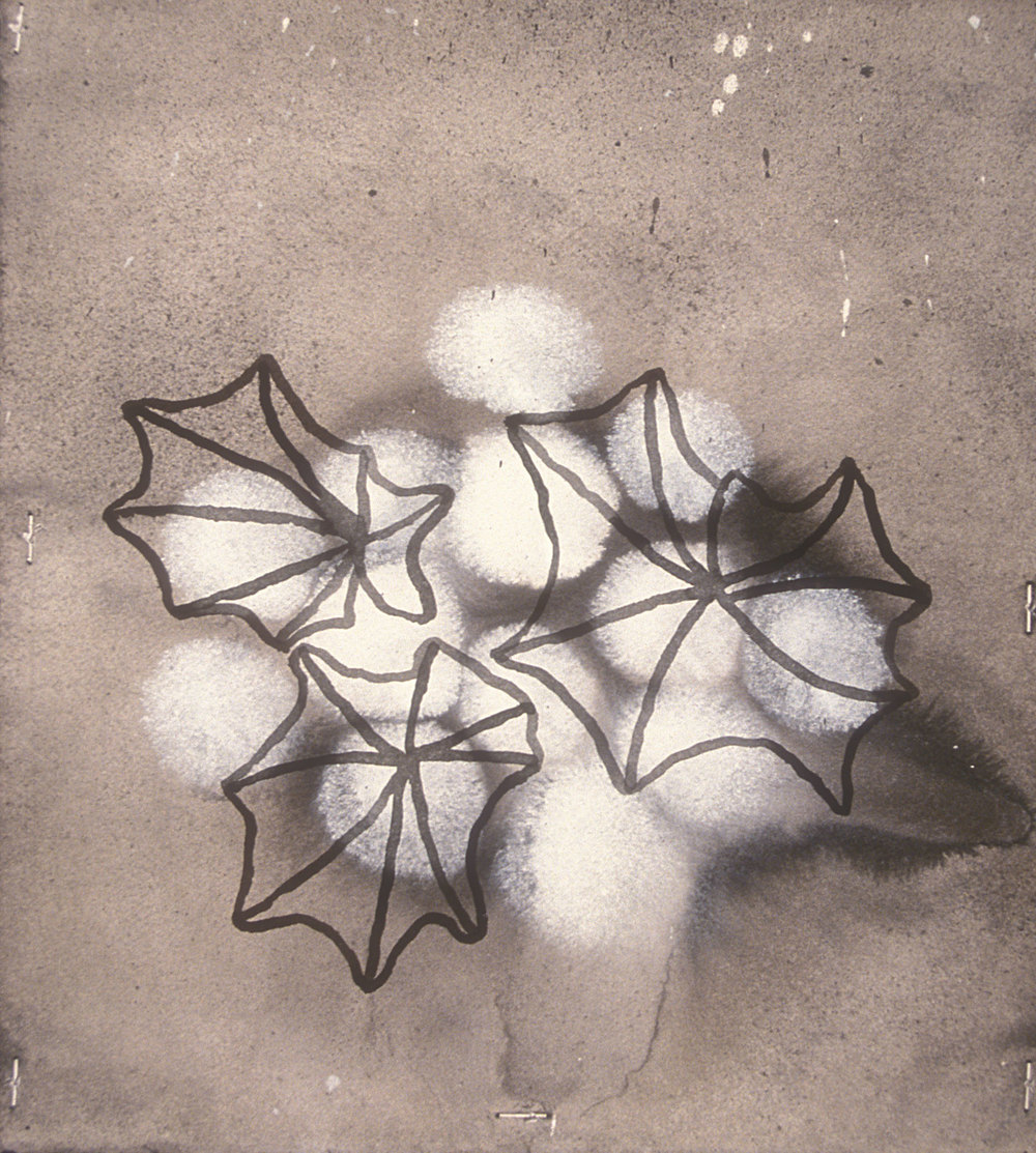 Aquatic 5  , 2003, india ink and gesso on paper, 16 x 14 in.