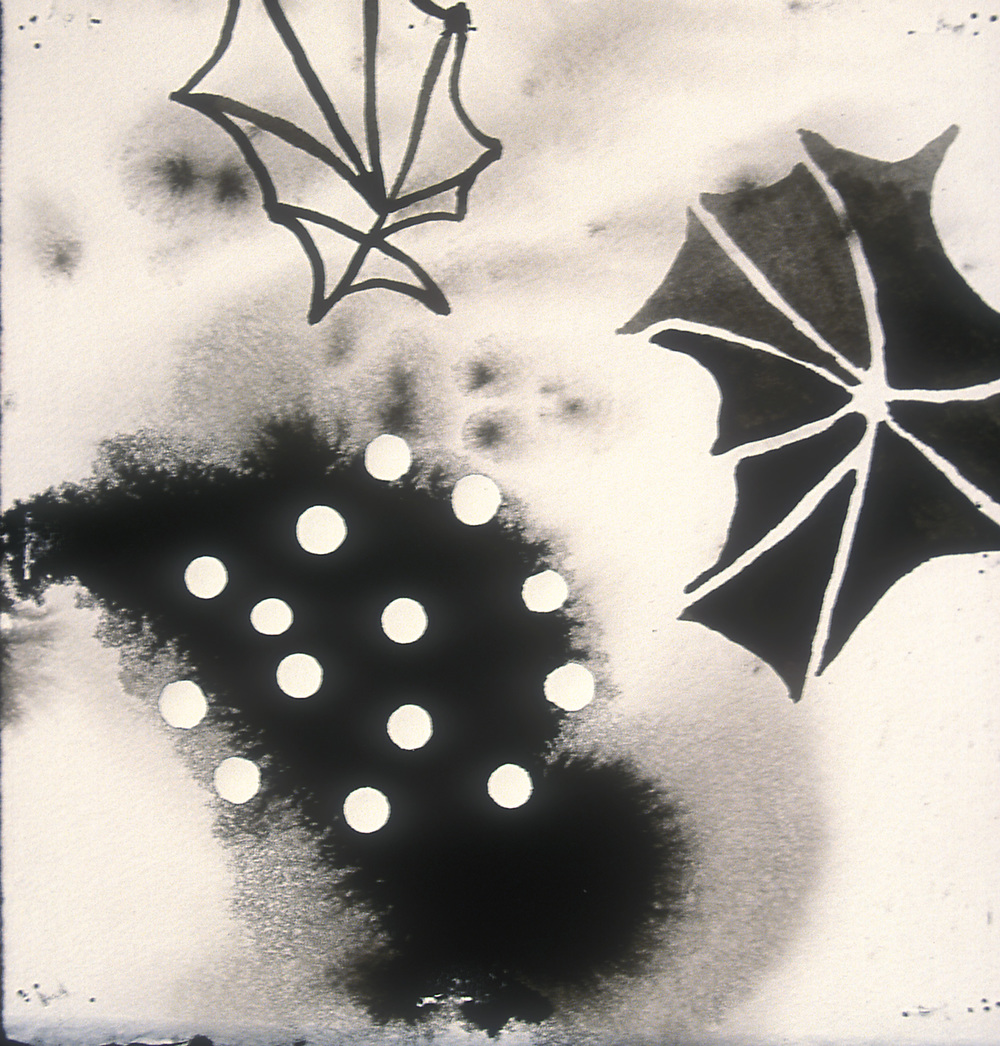 Aquatic 3  , 2003, india ink and gesso on paper, 16 x 14 in.