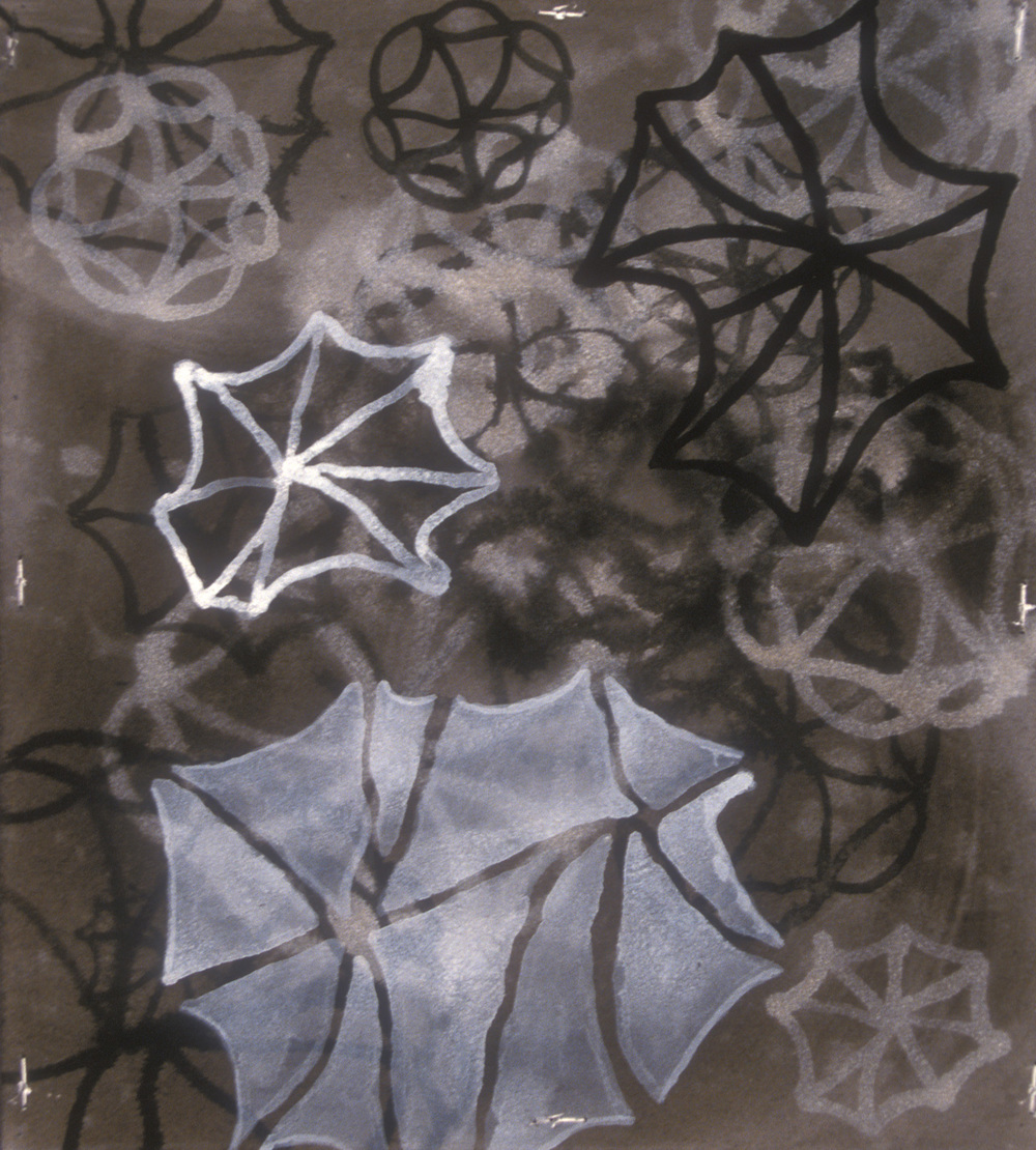 Aquatic 12  , 2003, India ink and gesso on paper, 16 x 14 in.