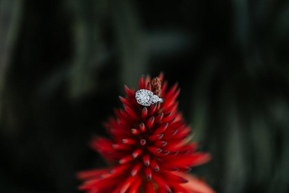 grace-t-photography-destination-wedding-photographer-21.jpg