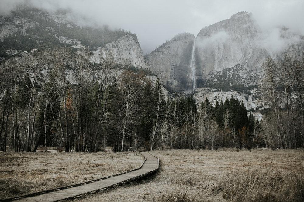 adventure-california-yosemite-photographer-grace-t-photography-27.jpg