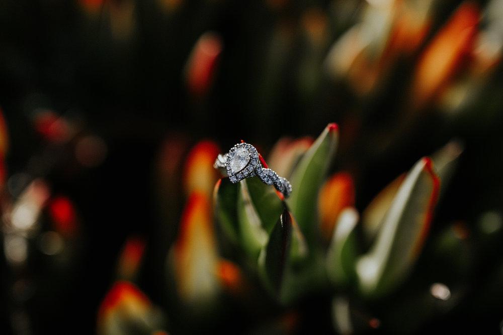 gracetphotography-destination-wedding-photographer-bigsur-adventure-elopement-41.jpg