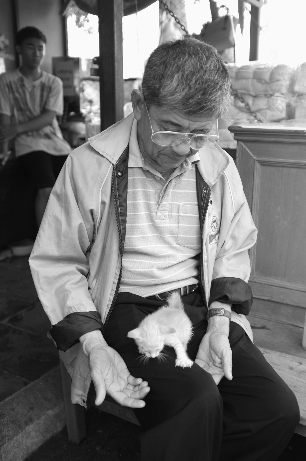 The Old Man and the Kitten