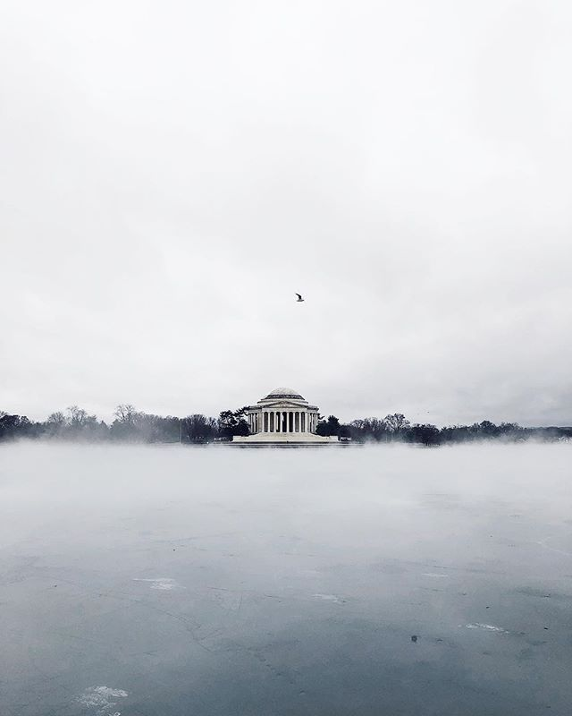 FOG. • #MWxDC #acreativedc #ShotOnIphoneX #walkwithlocals