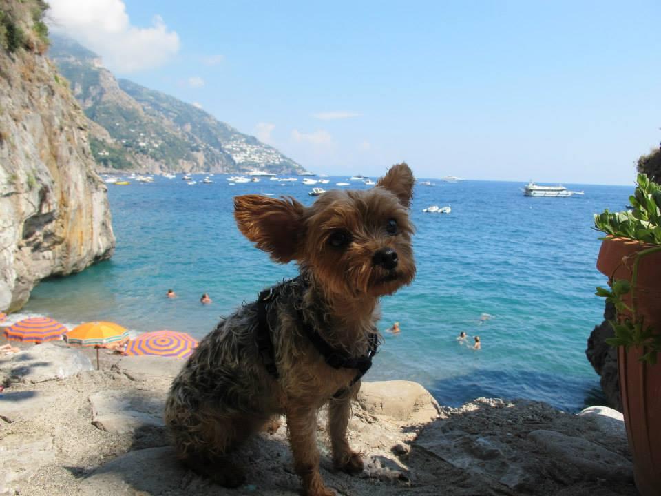 Amalfi7.jpeg