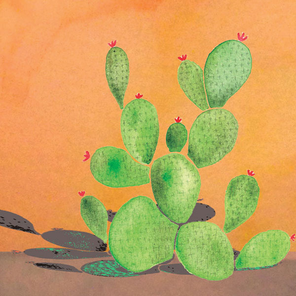 Cactus   Watercolour