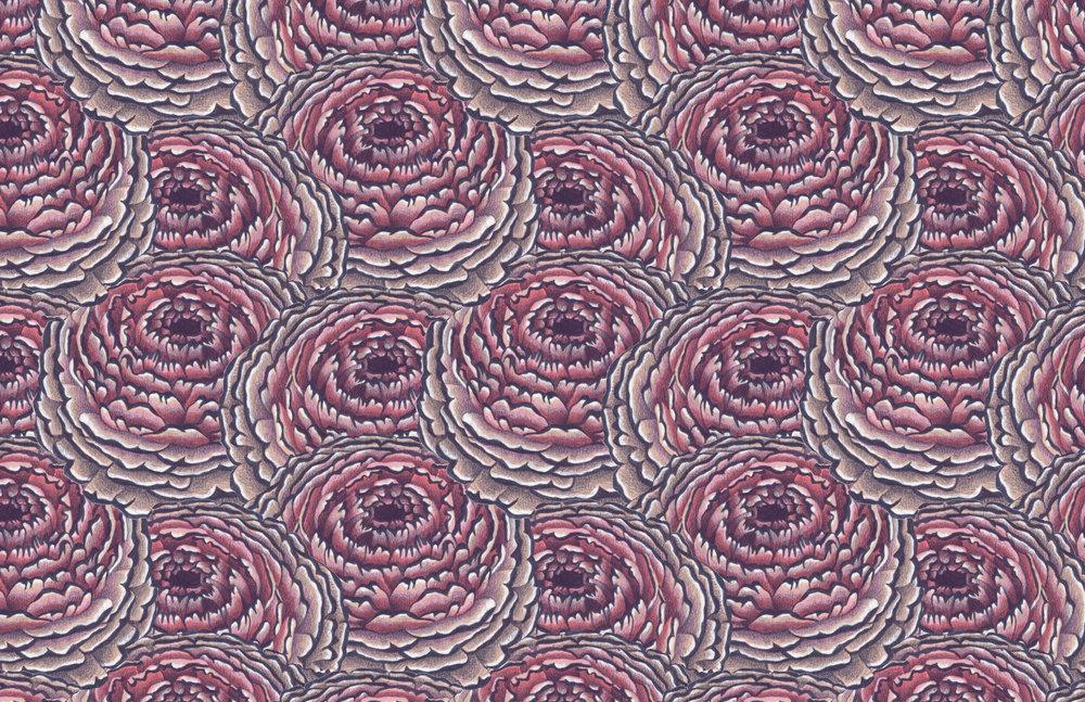 CaitlinKeegan_Pattern_PencilChrysanthemum.jpg