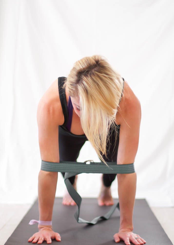 high chaturanga plank
