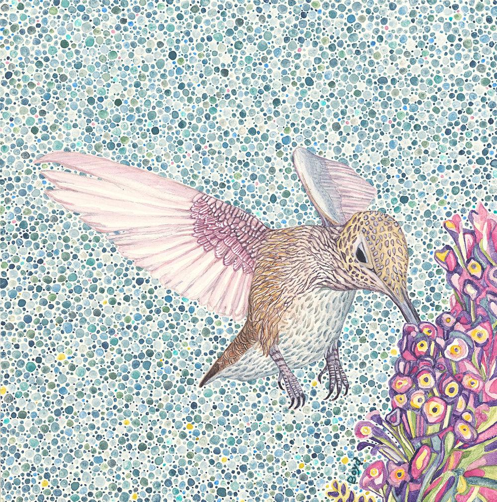 Hummingbird with Purple Flower
