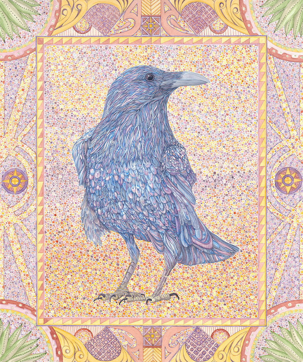 Standing Raven