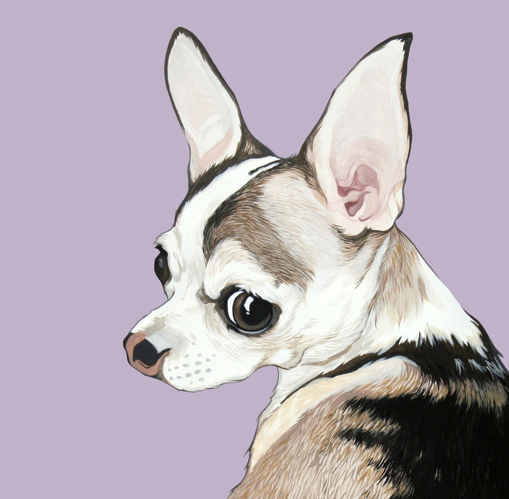 custom-pet-portrait-chihuahua.jpg