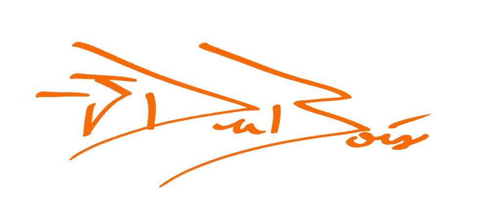 OrangeSignatureOnly.jpg