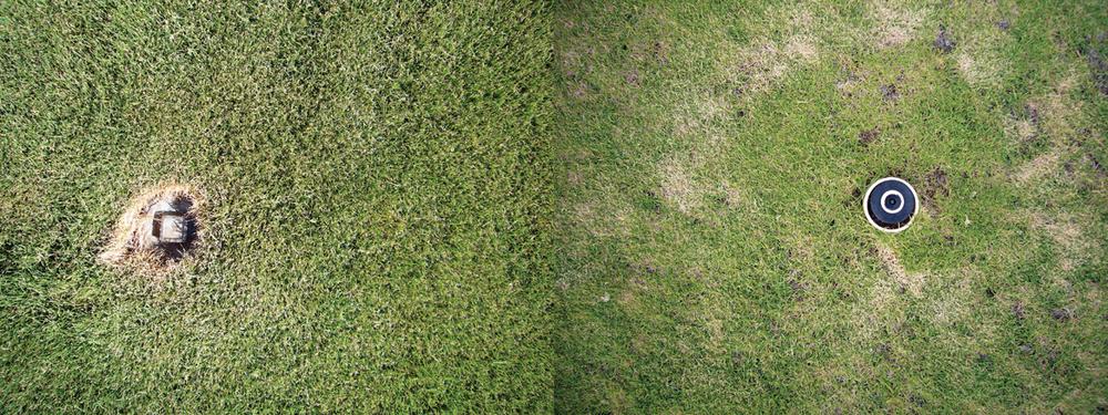 kim-beck-greener-11.jpg