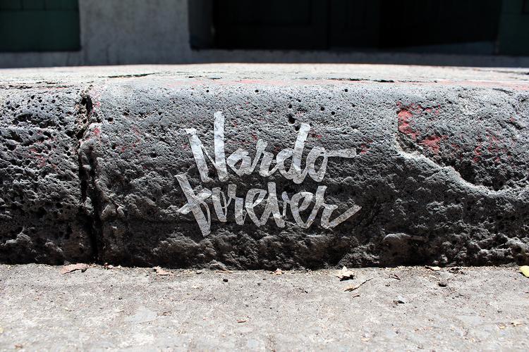 Nardo+Forever+Curb1.jpg