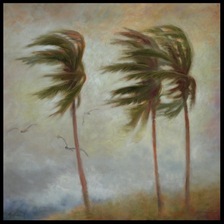 Windblown   40 x 40 Oil  $3600